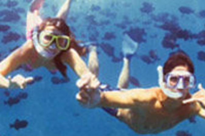 Waikiki Ocean Fun and BBQ Cruise