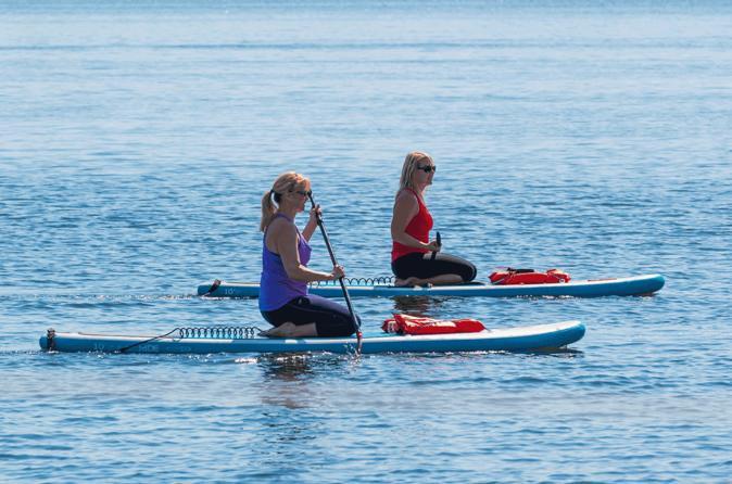 Observação de golfinhos e peixes-boi de excursão de stand Up Paddle