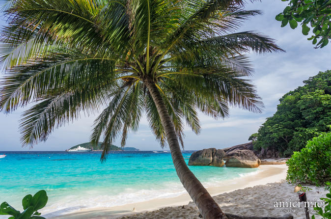 Schnorchelausflug zu den Similan Islands