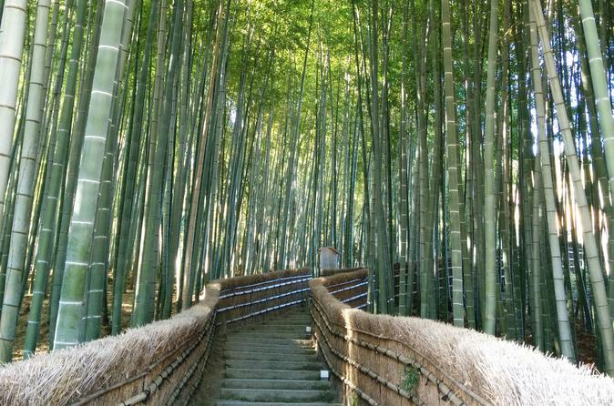 Private highlights of kyoto tour in kyoto 357143