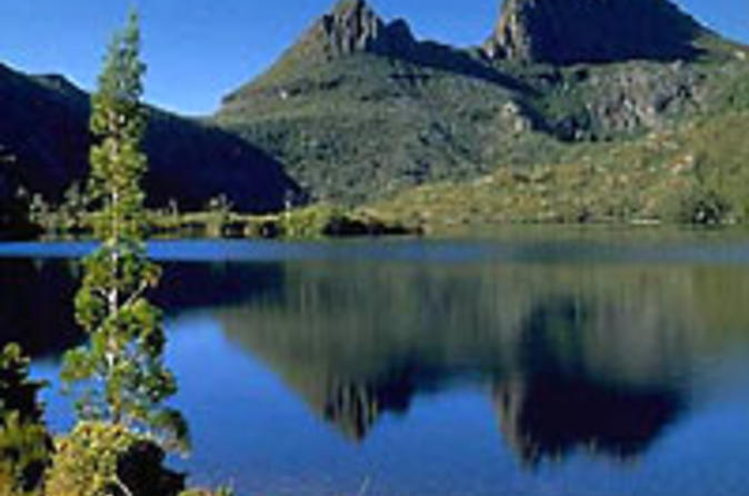 Cradle mountain national park day tour from launceston in launceston 35682