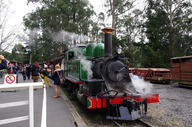 Puffing Billy-trein met optionele Penguin Parade of tour door Melbourne