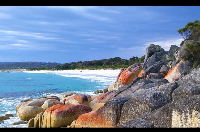 Tagesausflug zur Bay of Fires ab Launeston