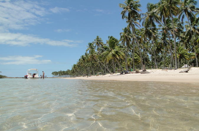 Full-Day Trip to Carneiros Beach from Recife