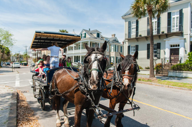 Carriage tour of historic charleston in charleston 361775