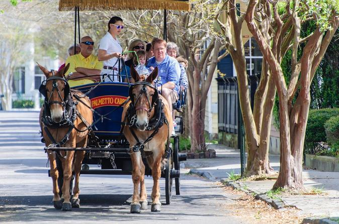 Evening carriage tour of downtown charleston in charleston 361764