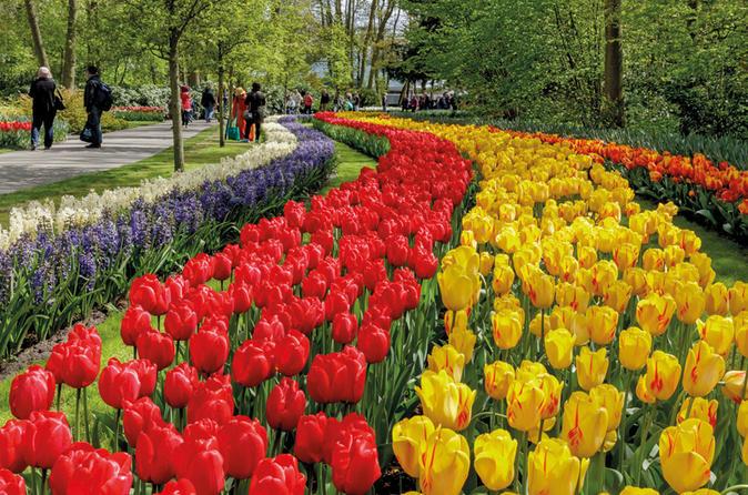 skip the line keukenhof gardens admission ticket with transportation from amsterdam - Amsterdam Garden