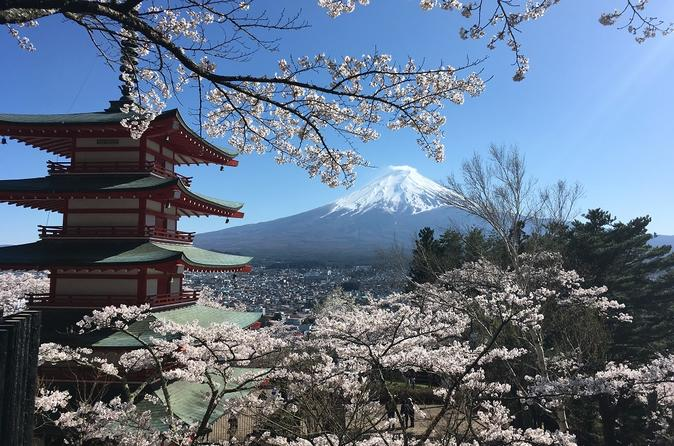 Private Tour: Chartered Car to Mt. Fuji and Hakone Lake Ashi