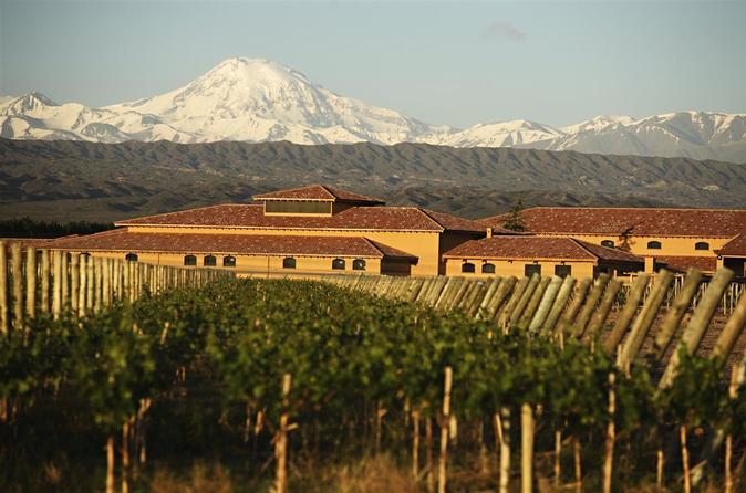 Excursão vinícola com almoço saindo de Mendoza