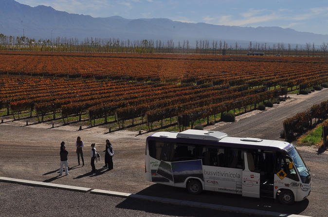 Excursão com várias paradas partindo de Mendoza