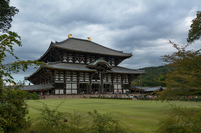 Private Kyoto And Nara Tour With A Photographer