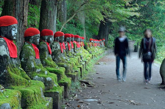 Private Nikko Tochigi Tour from Tokyo Metro Area Full Day