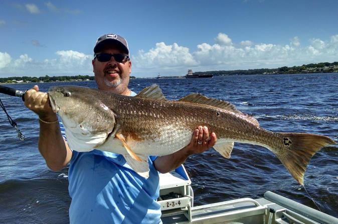 Half Day Sarasota Fishing Charter