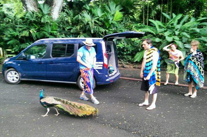 Private Customizable Tour of Oahu