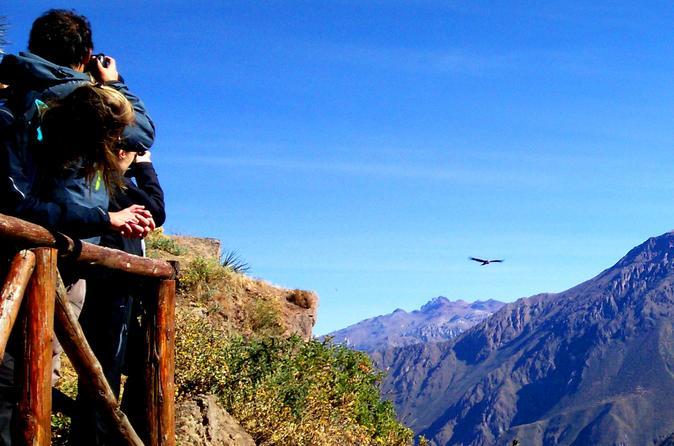 Full Day Cañón del Colca | Todo incluido
