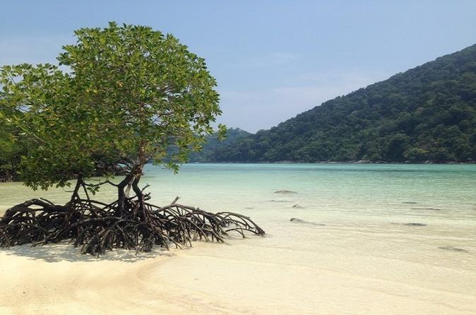 Inselhopping Tour nach Koh surin und Koh Tachai