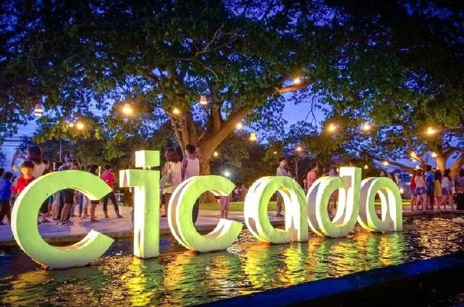 Weekend Mangrove Forest Tour And Cicada Night Market In Hua Hin