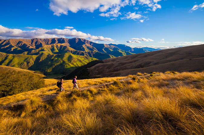 Full-Day Hike on Private Land from Queenstown