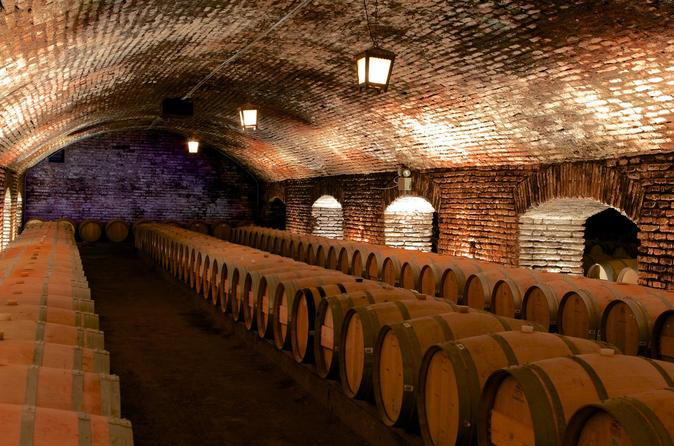 Santa Rita and Concha y Toro Wineries - Private Tour