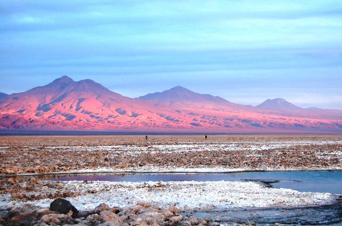 Piedras Rojas Altiplanic Lagoons and the Atacama Salt Flats