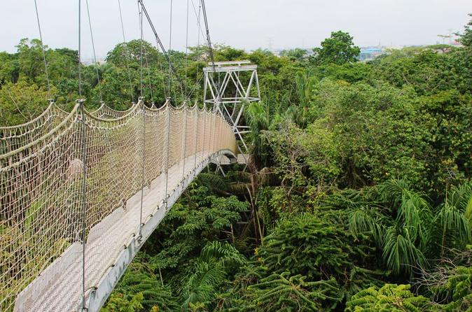 Lekki conservation centre private tour from lagos in lagos 395691