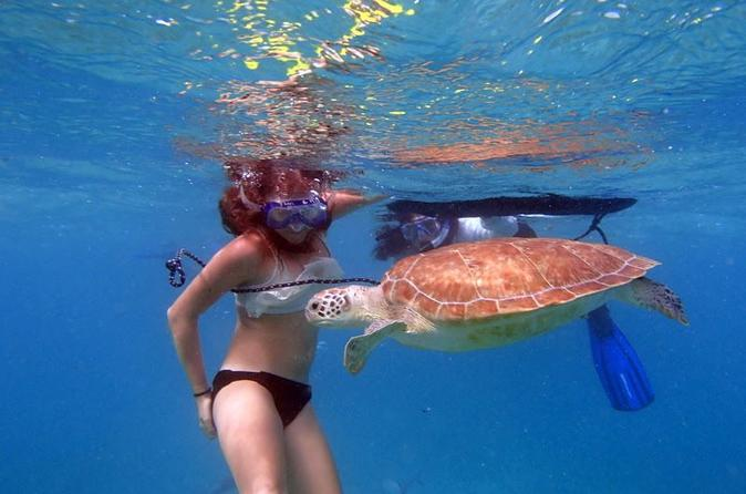 Florida Keys Eco, Paddle, and Snorkel Tour