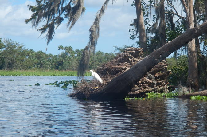 St Johns River Kayak Experience