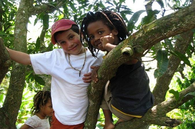 MoBay Highlight and Rastafarian indigenous Village Tour
