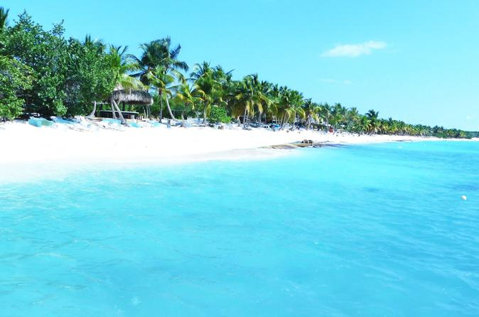Saona Island Day Trip From Punta Cana