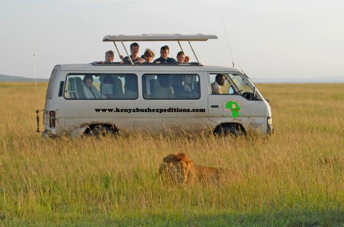 8 days Maasai mara, Nakuru, Amboseli and Tsavo west National parks Safaris