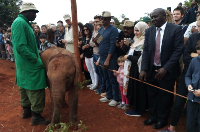 David Sheldrick Half-Day Tour