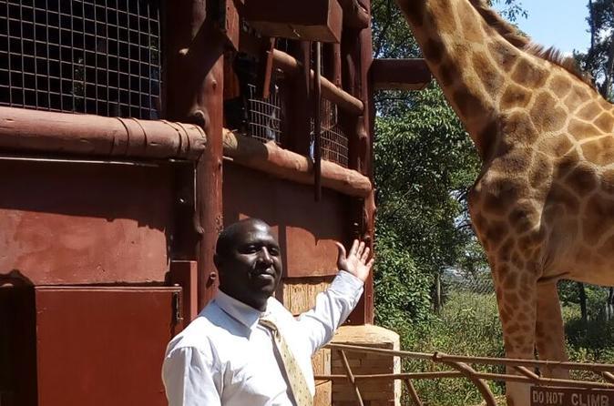 David Sheldrick Wildlife Trust, Karen Blixen Museum, Bomas of Kenya Private Tour