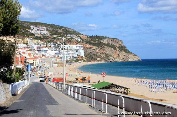 Half-Day Private Tour - Setúbal Wine Tasting and Lunch ate the Beach from Lisbon