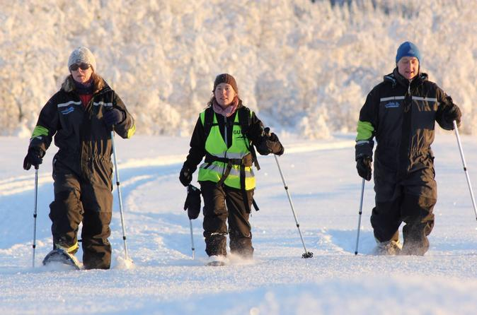 Snow Shoe Tour In The Arctic Tromso
