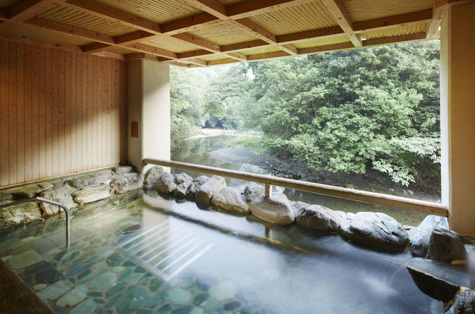 Kaiseki lunch and hot springs tour in izumisano 467941