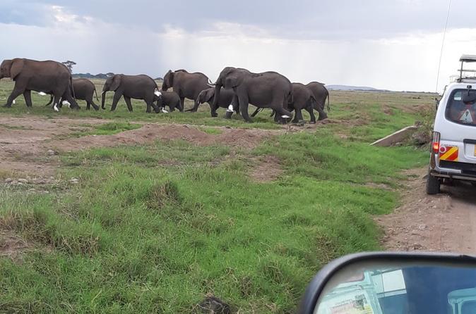 5 Days Tsavo East, Tsavo West & Amboseli Private Wildlife Safari from Mombasa