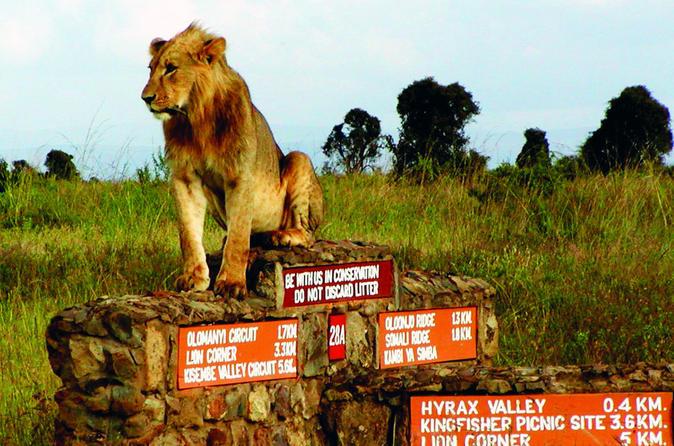 Full Day Nairobi National Park,Karen Blixen & Bomas Of Kenya