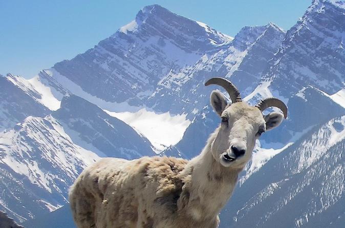 Banff Outdoor Activities