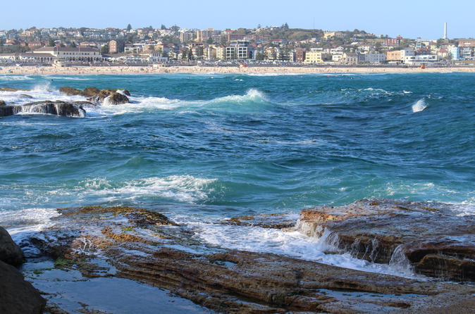 Sydney Discovery Tour Full Day Private Charter
