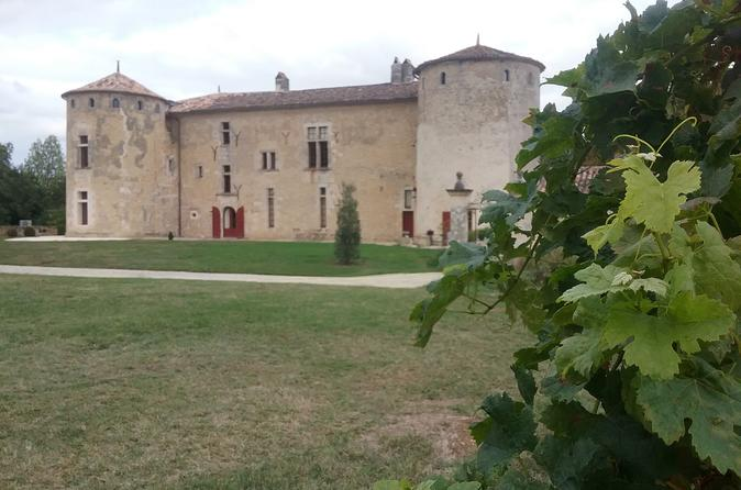 Small-Group Gourmet Bordeaux Day Trip from Paris with Wine Tastings
