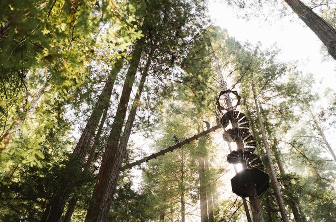 9 Hour Zip Line Beer and Private Wine Tour from Bay Area