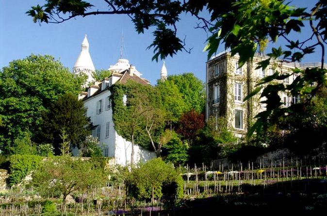 Wine in Paris: Historic Cellar Tour with VIP Vineyard Visit and Tastings