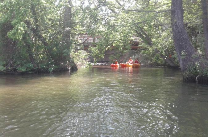 Small-Group Guided Serenity Kayak Tour in Austin