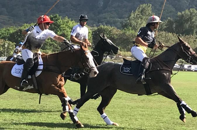 Oahu Polo Game and Private Island Tour from Honolulu