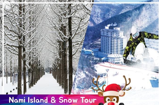 Full Day Nami Island & Snow Tour from Seoul
