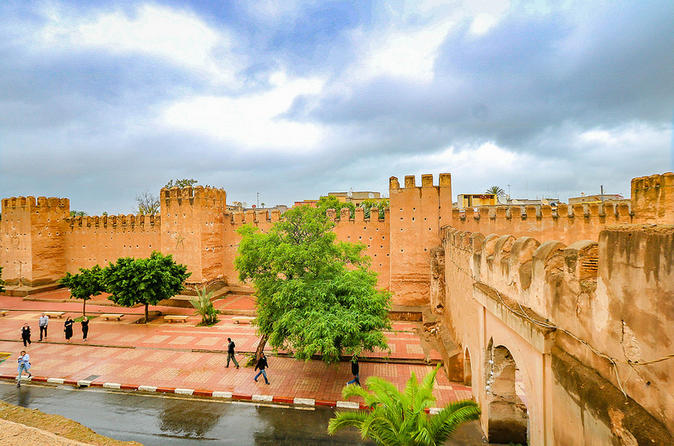 Taroudant Medina And Palmery In Agadir Day Trip ,private Excursion