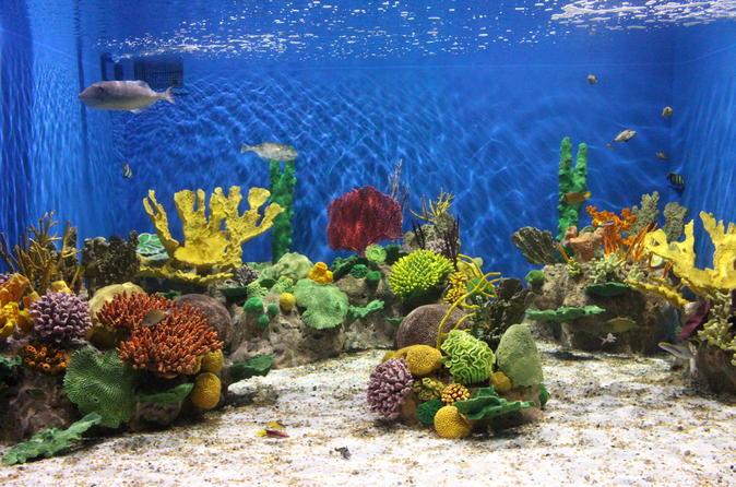 Ingresso de entrada para o AquaRio
