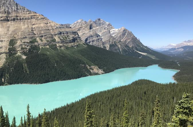 Private Tour Of Lake Louise And The Icefield Parkway 4 To 11 Guests - Banff