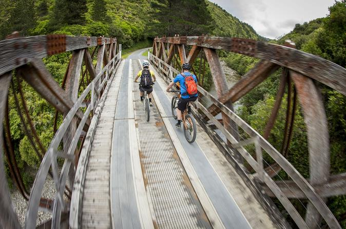 Remutaka Cycle Trail Highlights Tour from Wellington