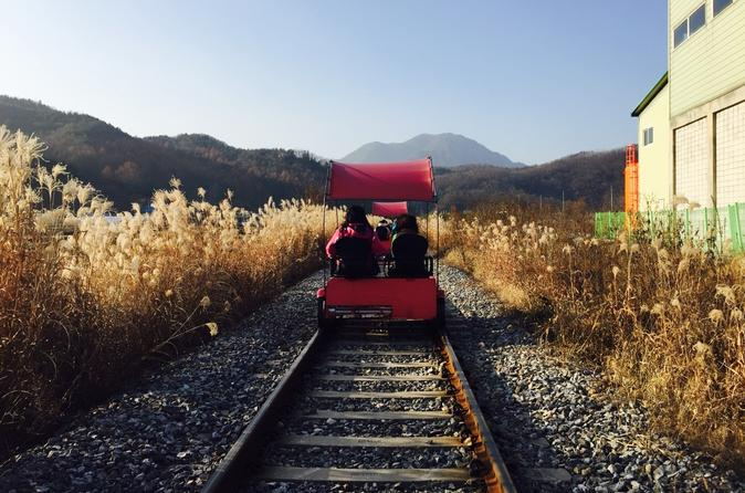 Day Trip to Nami Island with Petite France and Gangchon Rail bike""